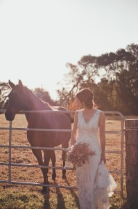 MALENY ACCOMMODATION HORSE HOLIDAY STABLES